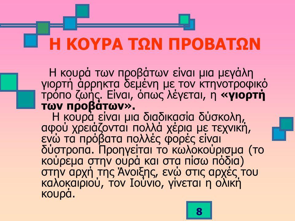 Η ΚΟΥΡΑ ΤΩΝ ΠΡΟΒΑΤΩΝ