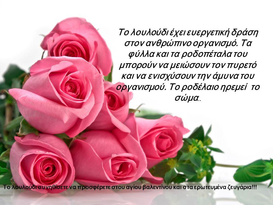 Το λουλούδι έχει ευεργετική δράση στον ανθρώπινο οργανισμό