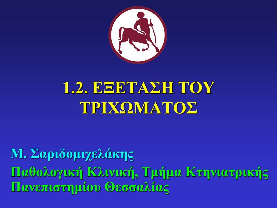 1.2. ΕΞΕΤΑΣΗ ΤΟΥ ΤΡΙΧΩΜΑΤΟΣ