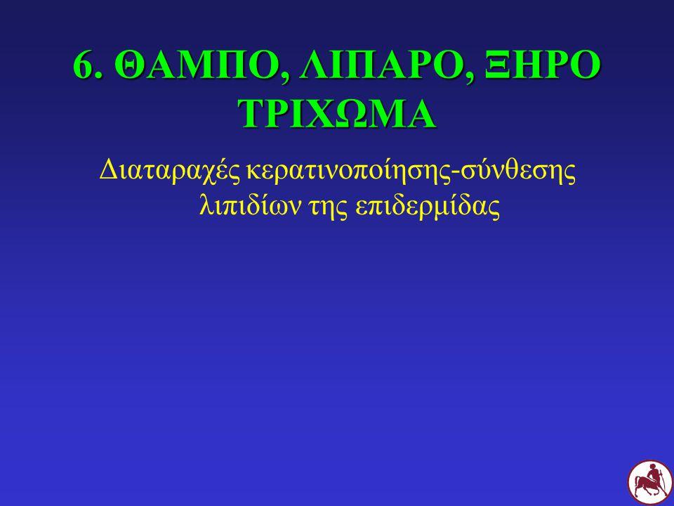 6. ΘΑΜΠΟ, ΛΙΠΑΡΟ, ΞΗΡΟ ΤΡΙΧΩΜΑ