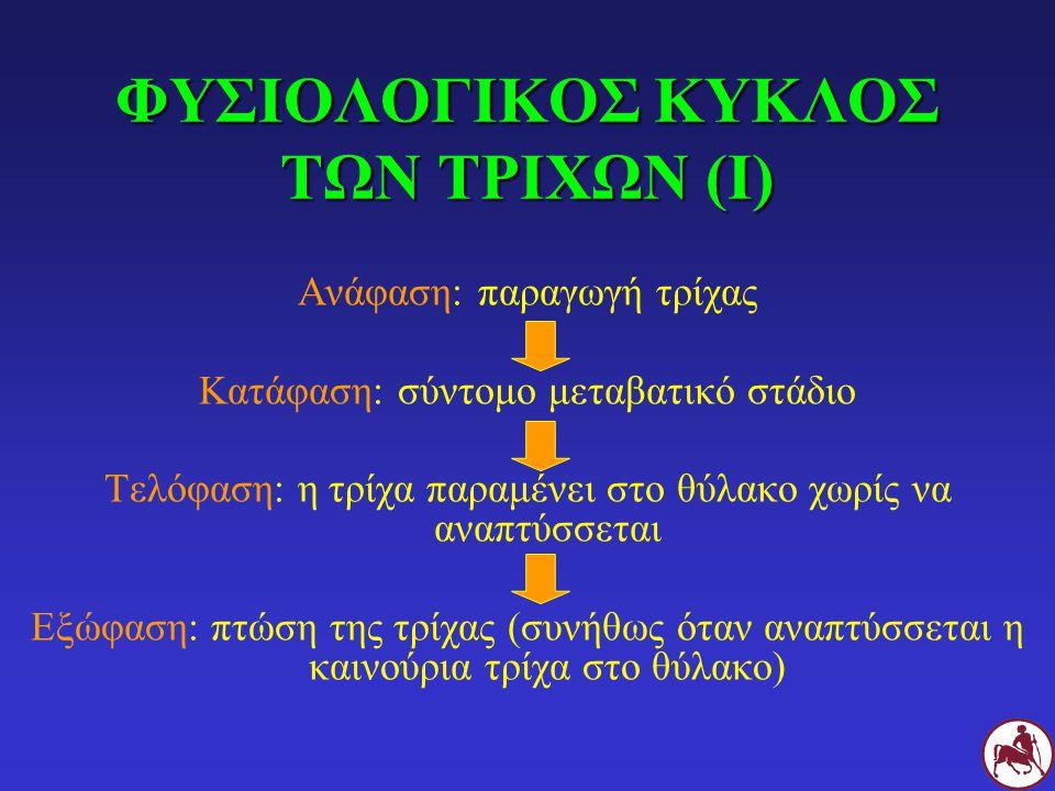 ΦΥΣΙΟΛΟΓΙΚΟΣ ΚΥΚΛΟΣ ΤΩΝ ΤΡΙΧΩΝ (Ι)