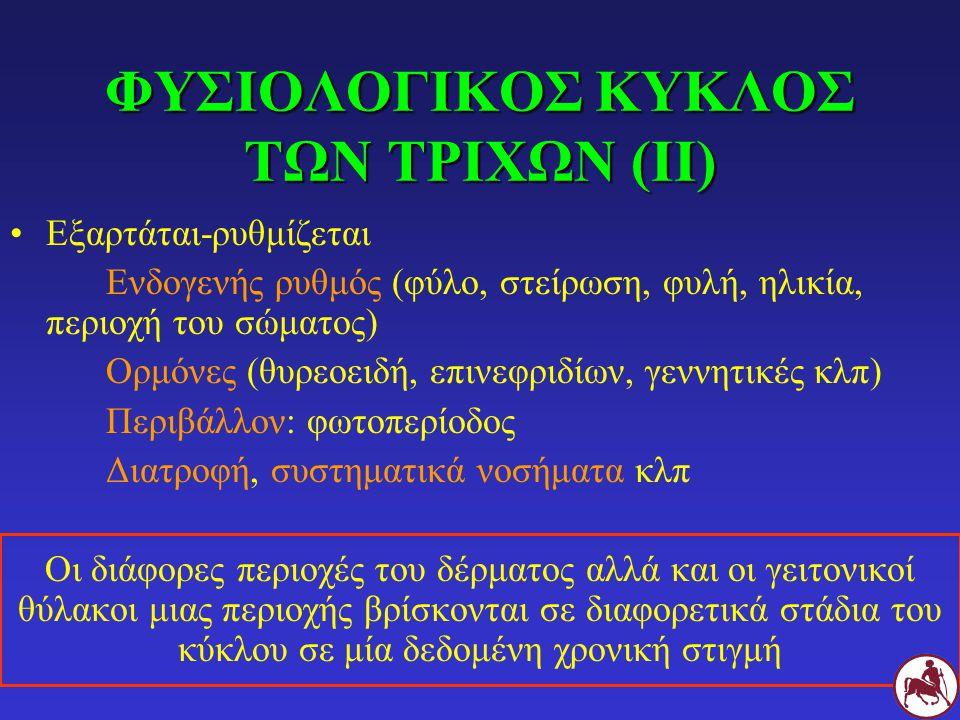 ΦΥΣΙΟΛΟΓΙΚΟΣ ΚΥΚΛΟΣ ΤΩΝ ΤΡΙΧΩΝ (ΙΙ)