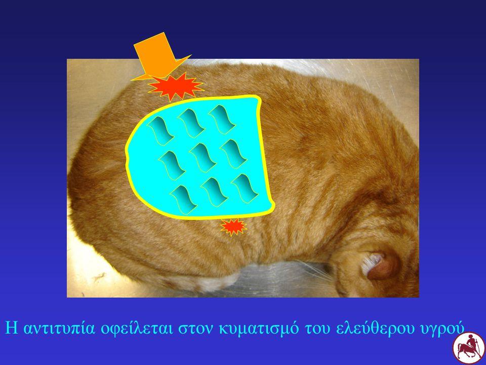 Η αντιτυπία οφείλεται στον κυματισμό του ελεύθερου υγρού