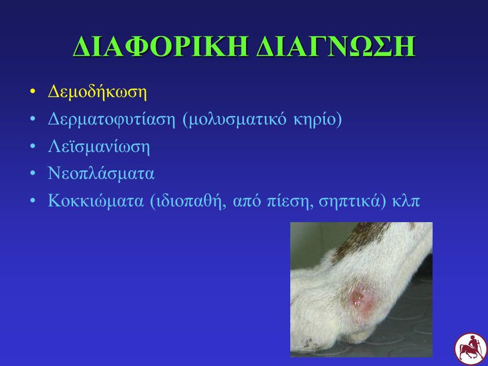 ΔΙΑΦΟΡΙΚΗ ΔΙΑΓΝΩΣΗ Δεμοδήκωση Δερματοφυτίαση (μολυσματικό κηρίο)