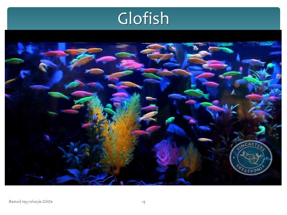 Glofish Βασική τεχνολογία GMOs