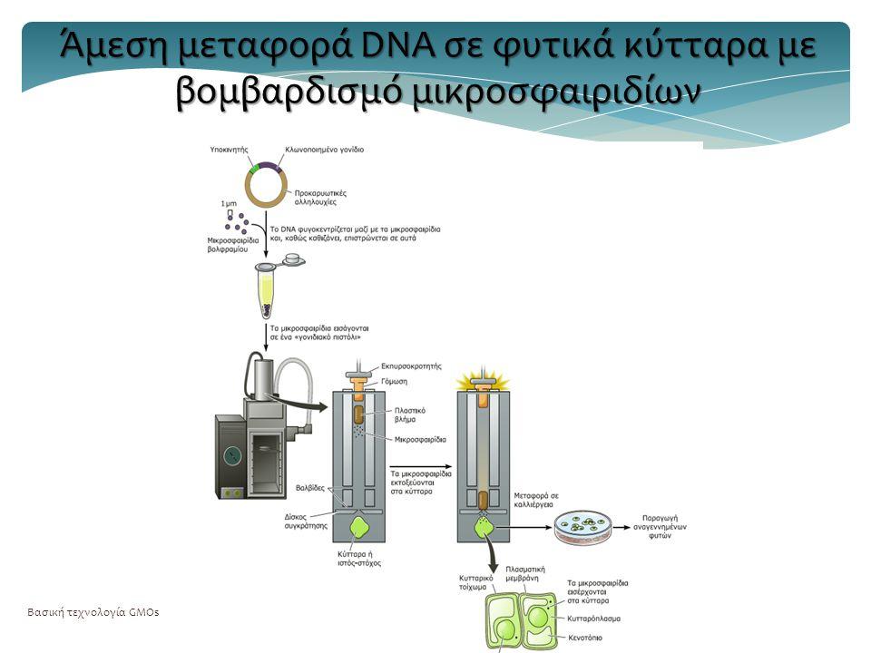 Άμεση μεταφορά DNA σε φυτικά κύτταρα με βομβαρδισμό μικροσφαιριδίων
