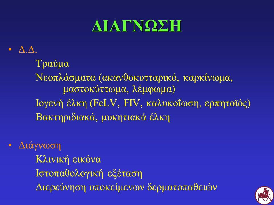 ΔΙΑΓΝΩΣΗ Δ.Δ. Τραύμα. Νεοπλάσματα (ακανθοκυτταρικό, καρκίνωμα, μαστοκύττωμα, λέμφωμα) Ιογενή έλκη (FeLV, FIV, καλυκοΐωση, ερπητοϊός)