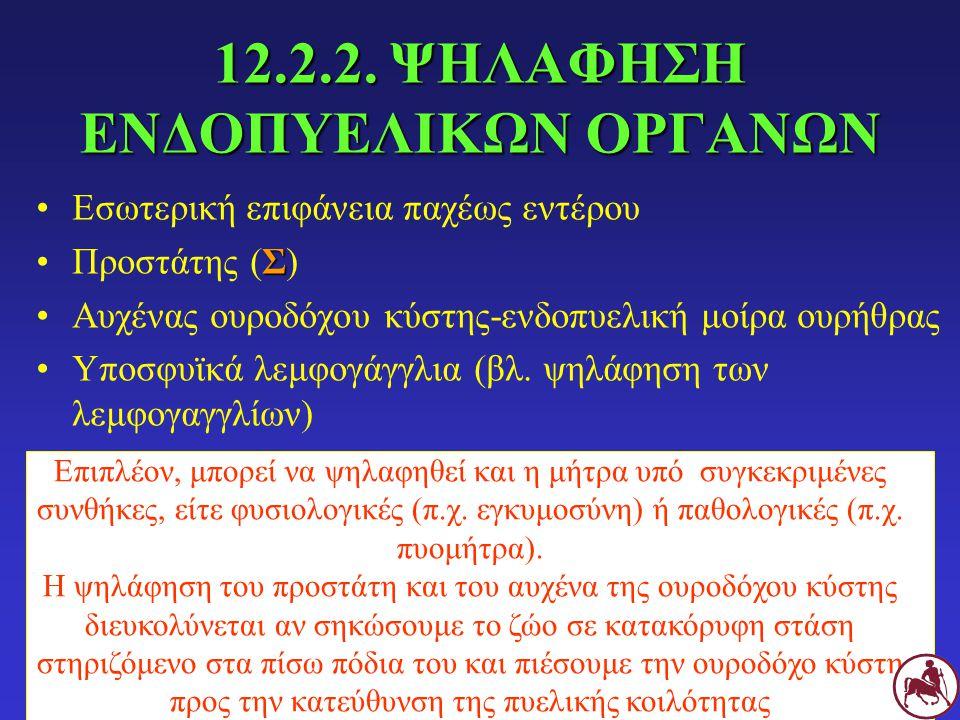 12.2.2. ΨΗΛΑΦΗΣΗ ΕΝΔΟΠΥΕΛΙΚΩΝ ΟΡΓΑΝΩΝ