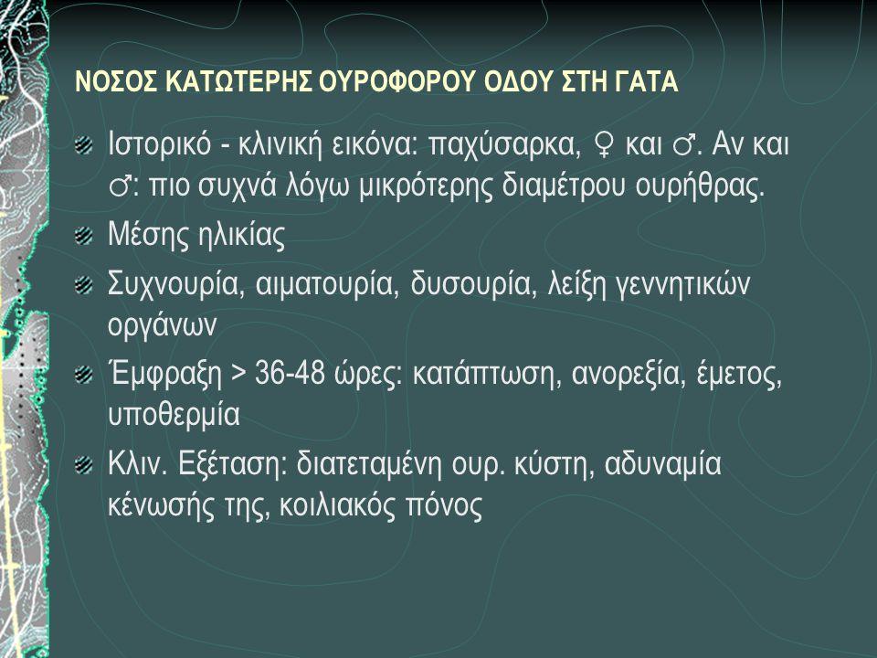 ΝΟΣΟΣ ΚΑΤΩΤΕΡΗΣ ΟΥΡΟΦΟΡΟΥ ΟΔΟΥ ΣΤΗ ΓΑΤΑ