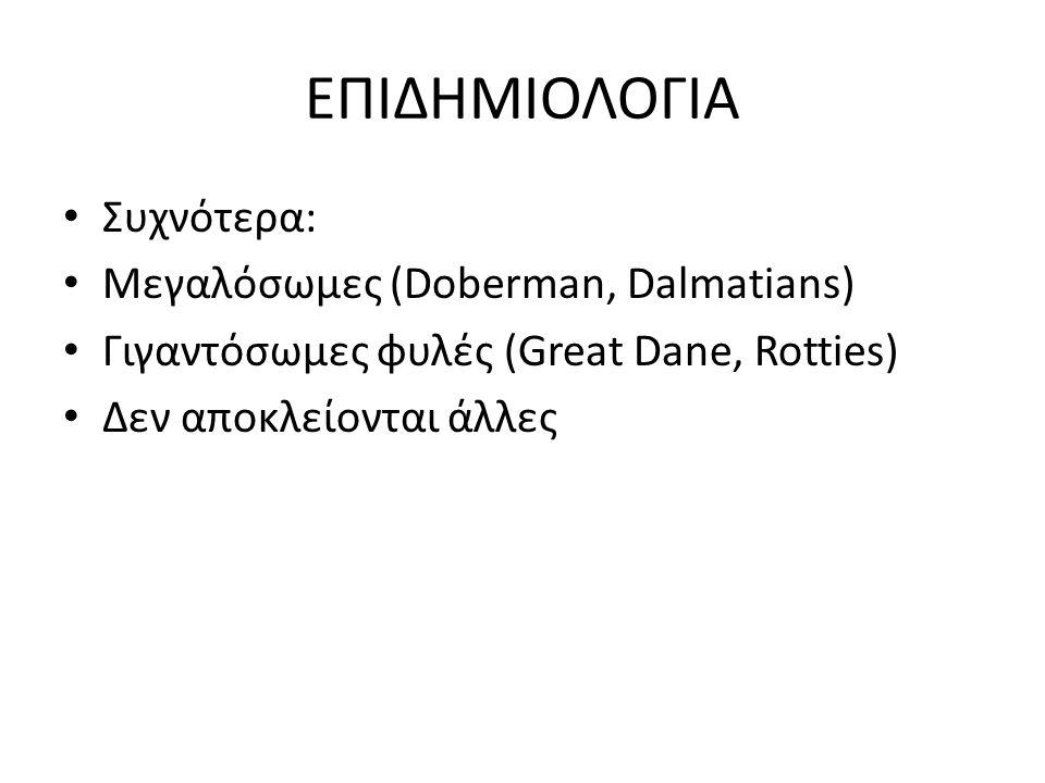 ΕΠΙΔΗΜΙΟΛΟΓΙΑ Συχνότερα: Μεγαλόσωμες (Doberman, Dalmatians)