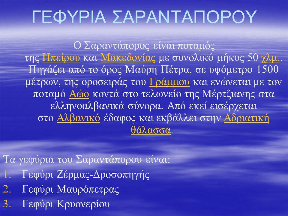 ΓΕΦΥΡΙΑ ΣΑΡΑΝΤΑΠΟΡΟΥ