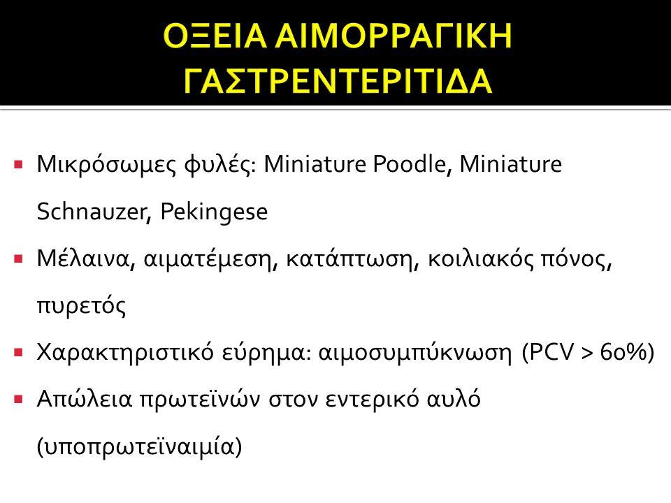 ΟΞΕΙΑ ΑΙΜΟΡΡΑΓΙΚΗ ΓΑΣΤΡΕΝΤΕΡΙΤΙΔΑ