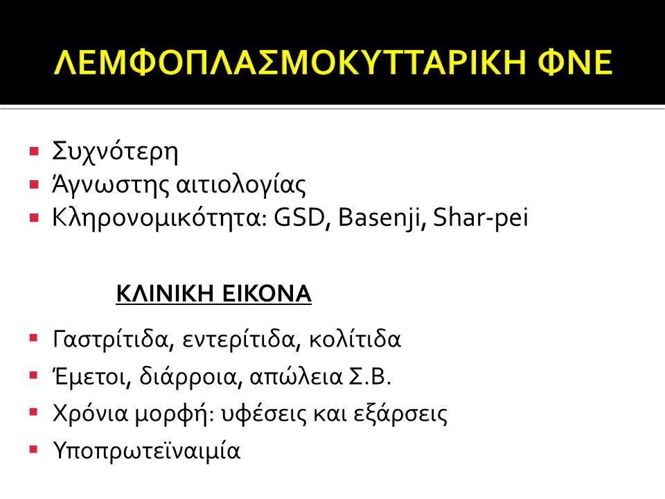 ΛΕΜΦΟΠΛΑΣΜΟΚΥΤΤΑΡΙΚΗ ΦΝΕ