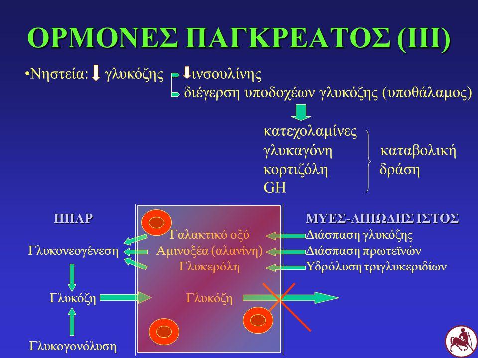 ΟΡΜΟΝΕΣ ΠΑΓΚΡΕΑΤΟΣ (ΙΙΙ)