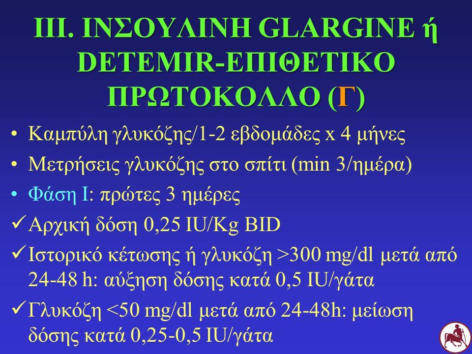 ΙΙΙ. ΙΝΣΟΥΛΙΝΗ GLARGINE ή DETEMIR-ΕΠΙΘΕΤΙΚΟ ΠΡΩΤΟΚΟΛΛΟ (Γ)