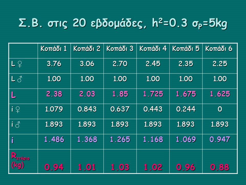 Σ.Β. στις 20 εβδομάδες, h2=0.3 σP=5kg