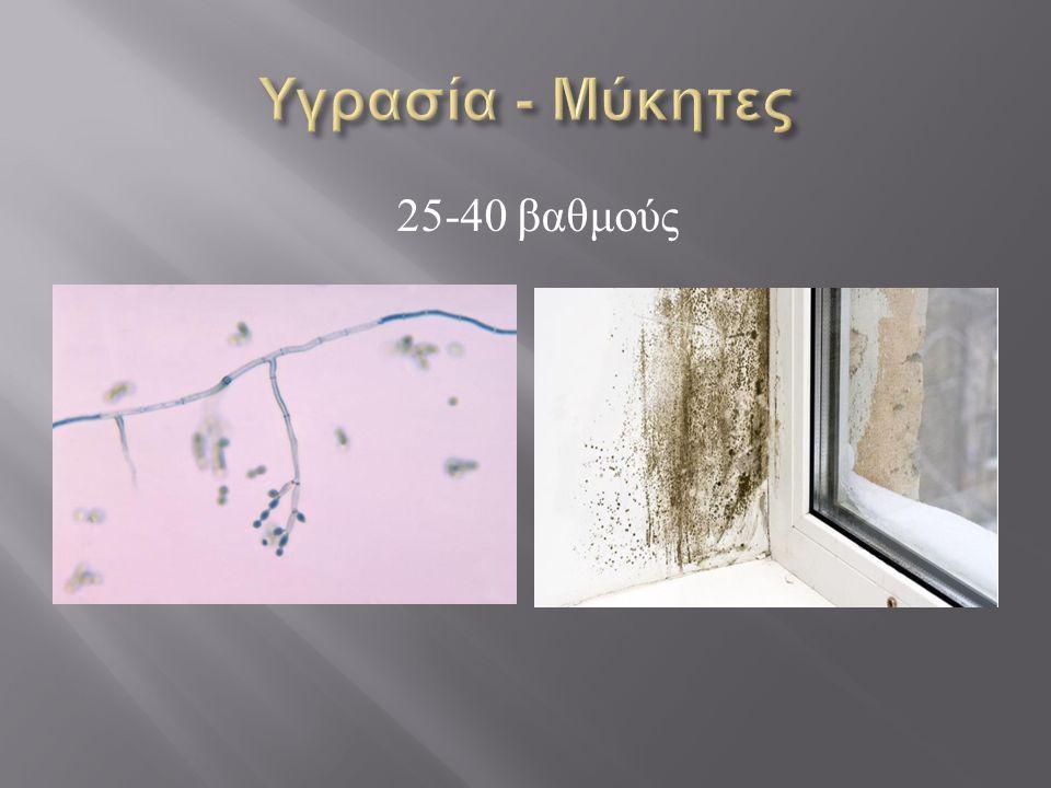 Υγρασία - Μύκητες 25-40 βαθμούς