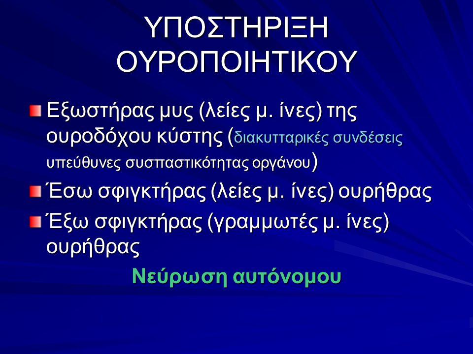 ΥΠΟΣΤΗΡΙΞΗ ΟΥΡΟΠΟΙΗΤΙΚΟΥ
