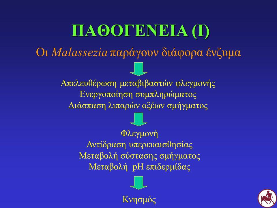 ΠΑΘΟΓΕΝΕΙΑ (Ι) Οι Malassezia παράγουν διάφορα ένζυμα