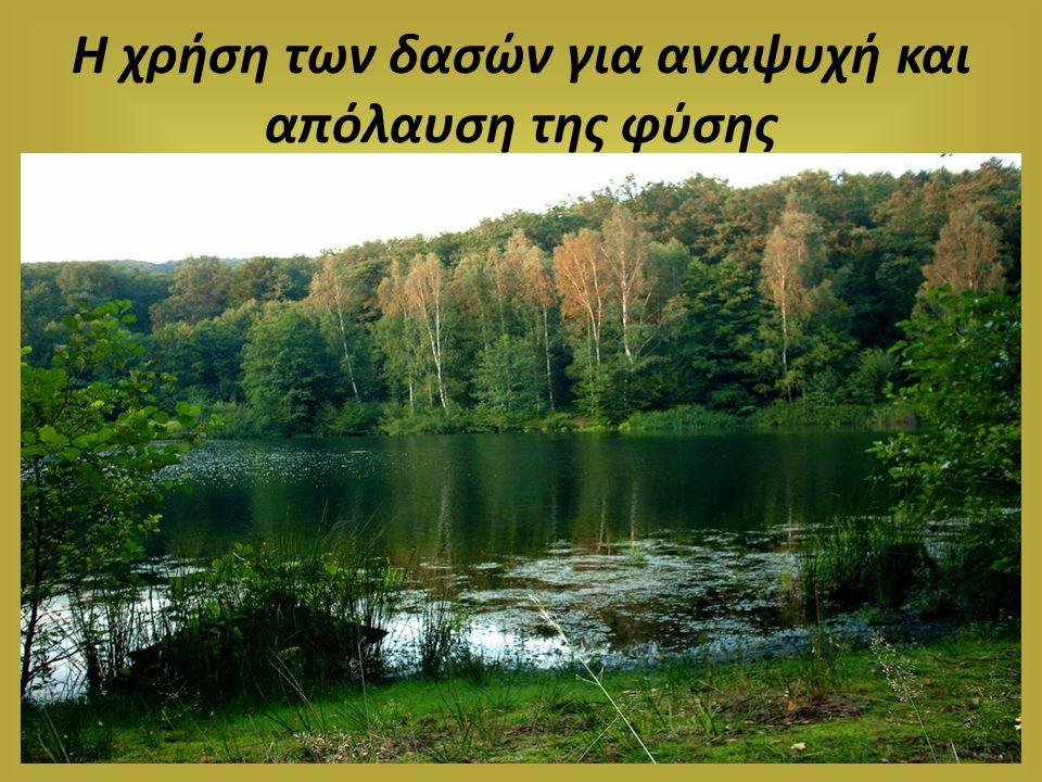 Η χρήση των δασών για αναψυχή και απόλαυση της φύσης