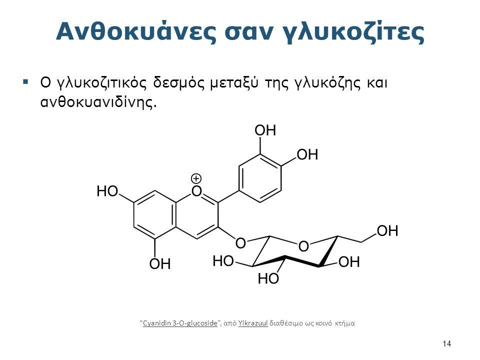 Δισακχαρίτες 1/2 chemistry.msu.edu
