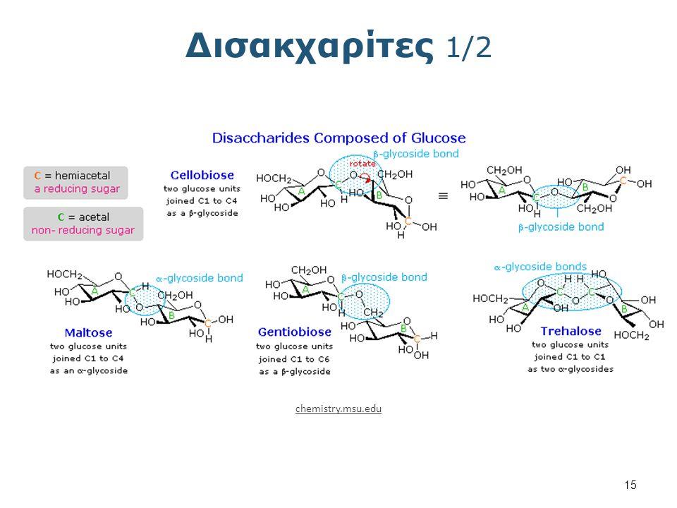 Δισακχαρίτες 2/2 sivabio.50webs.com