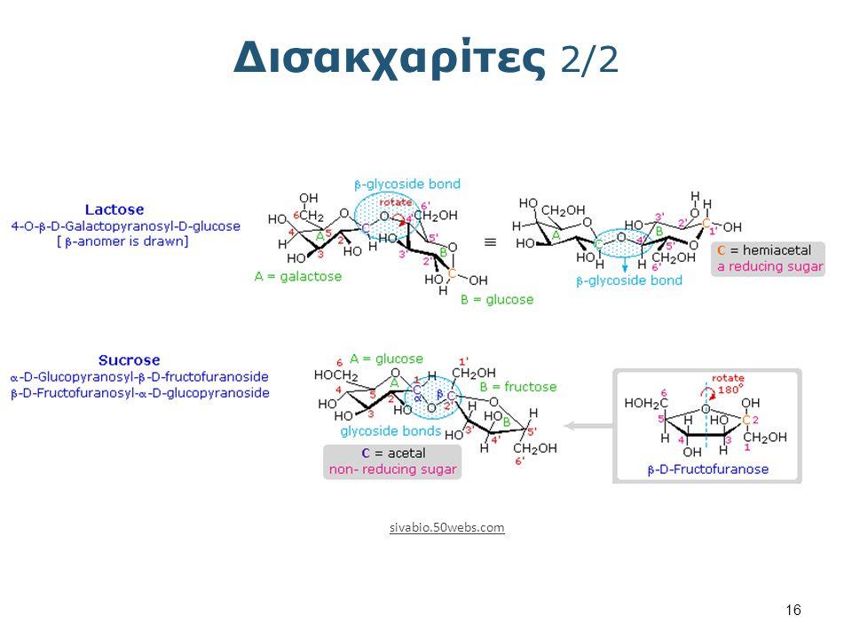 Πολυσακχαρίτες 1/2 qfa.uam.es