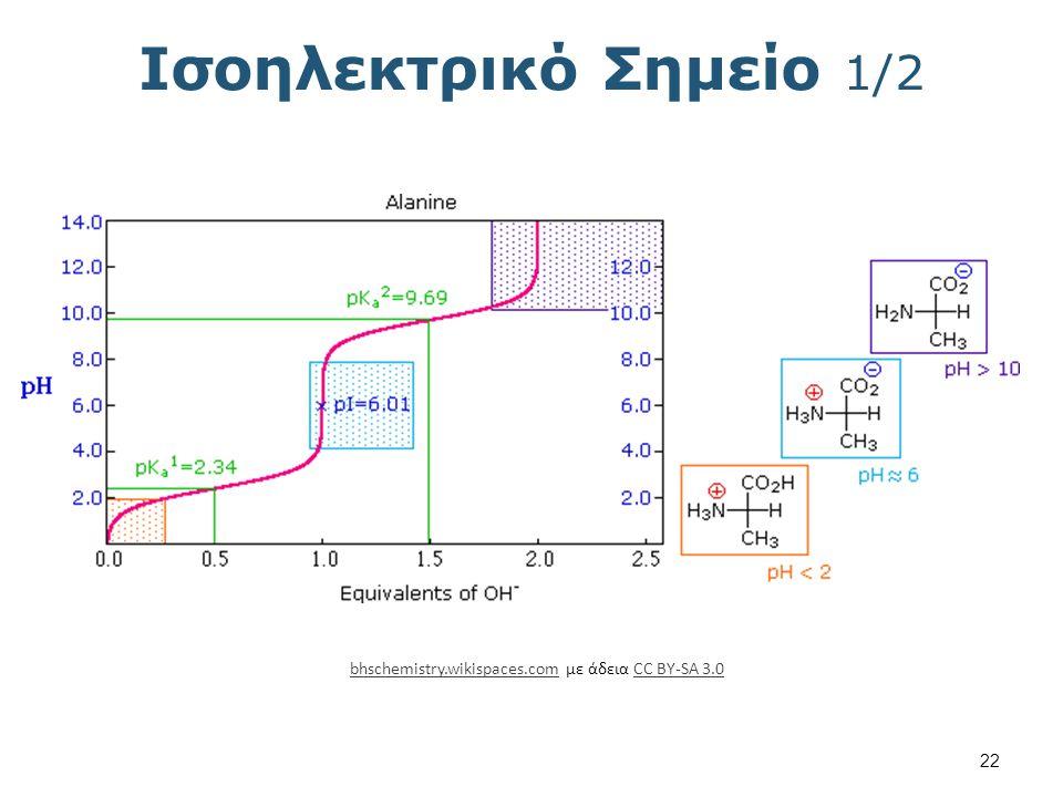 Ισοηλεκτρικό Σημείο 2/2 Τιμές pK των Αμινοξέων Αμινοξύ α-CO2H pKa1