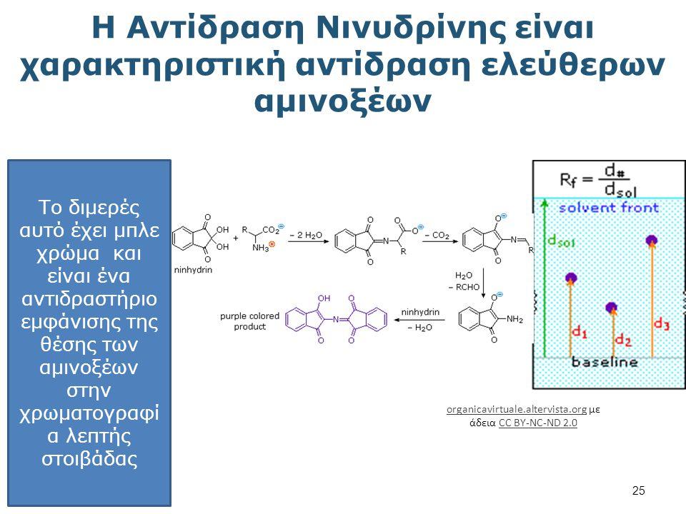 Σύνθεση των α - Αμινοξέων