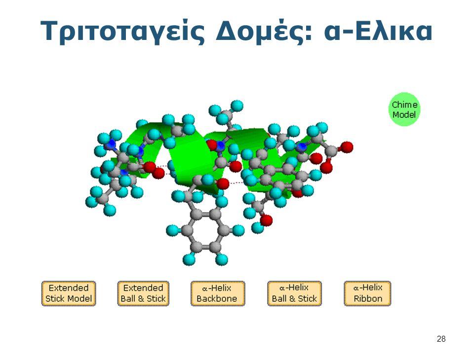 Τριτοταγείς Δομές: β-Πτυχωτή