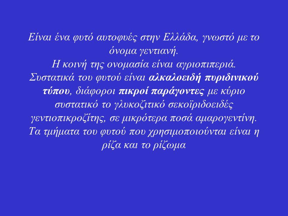 Είναι ένα φυτό αυτοφυές στην Ελλάδα, γνωστό με το όνομα γεντιανή