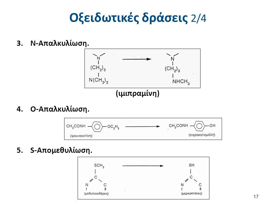Οξειδωτικές δράσεις 3/4 Οξειδωτική απαμίνωση.