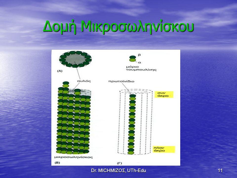 Δομή Μικροσωληνίσκου Dr. ΜΙCHΜΙΖΟΣ, UTh-Edu