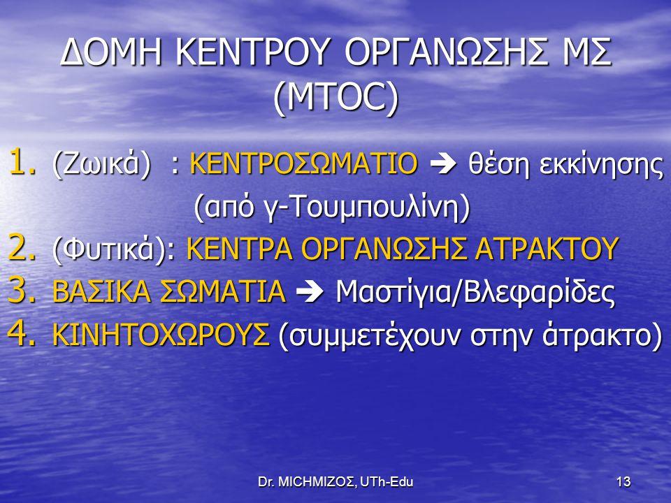 ΔΟΜΗ ΚΕΝΤΡΟΥ ΟΡΓΑΝΩΣΗΣ ΜΣ (MTOC)
