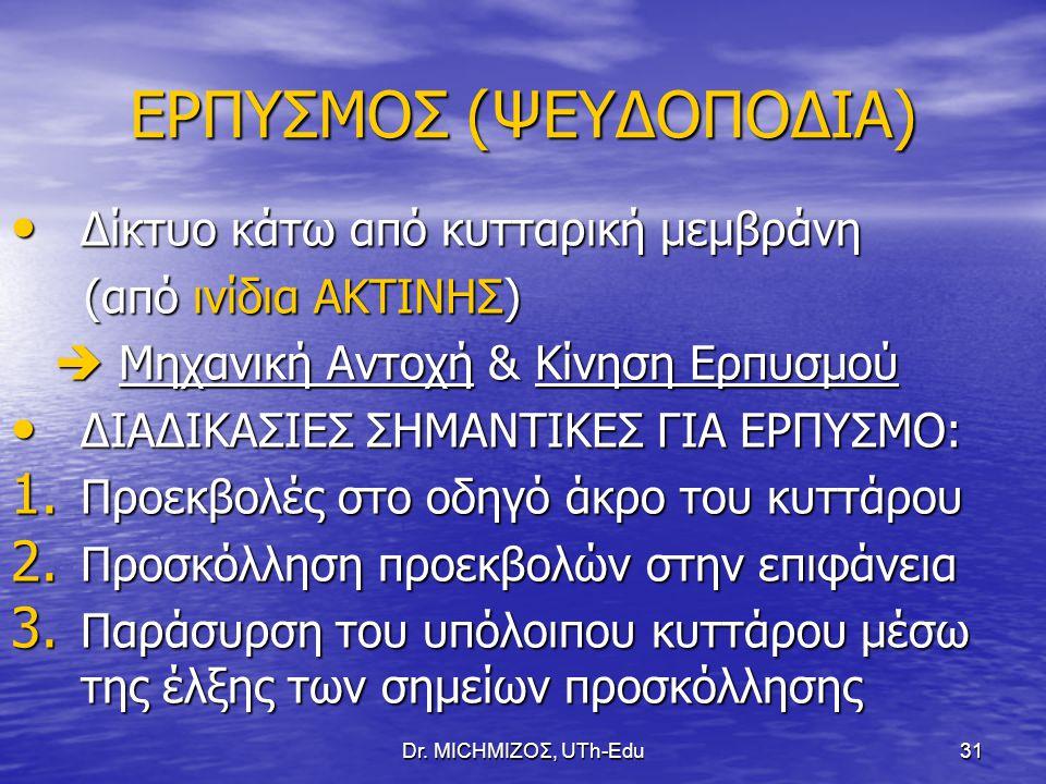 ΕΡΠΥΣΜΟΣ (ΨΕΥΔΟΠΟΔΙΑ)