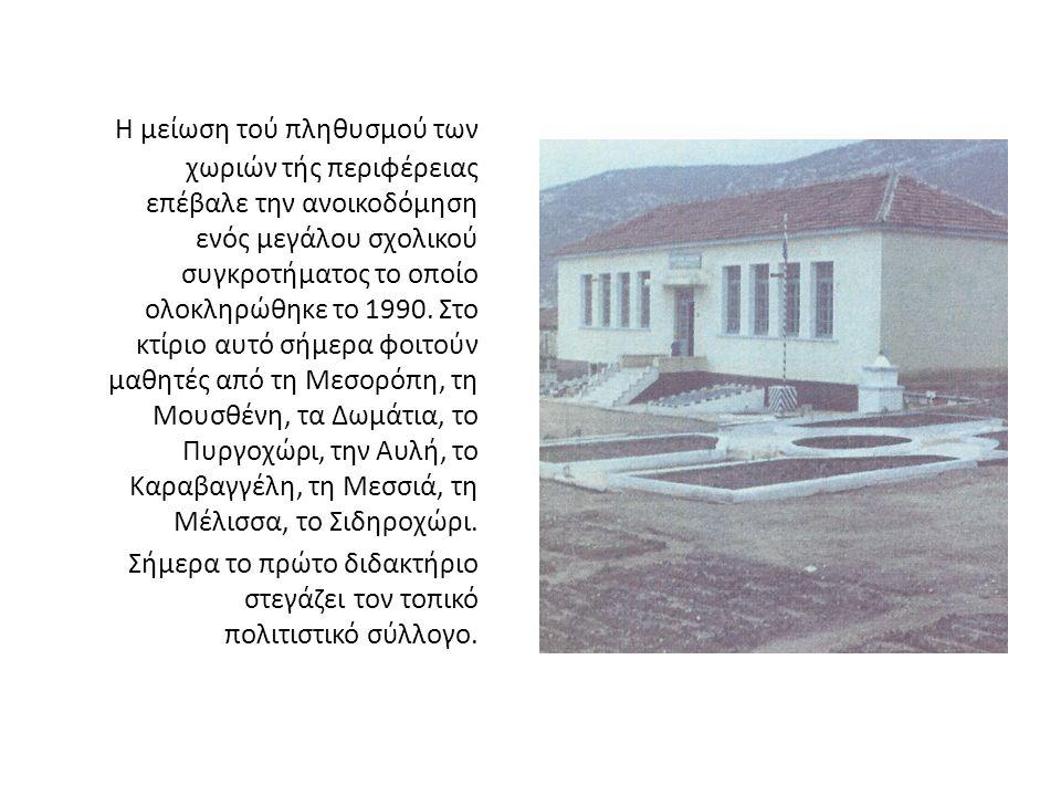 Η μείωση τού πληθυσμού των χωριών τής περιφέρειας επέβαλε την ανοικοδόμηση ενός μεγάλου σχολικού συγκροτήματος το οποίο ολοκληρώθηκε το 1990. Στο κτίριο αυτό σήμερα φοιτούν μαθητές από τη Μεσορόπη, τη Μουσθένη, τα Δωμάτια, το Πυργοχώρι, την Αυλή, το Καραβαγγέλη, τη Μεσσιά, τη Μέλισσα, το Σιδηροχώρι.