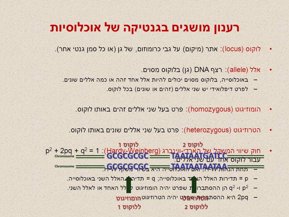 רענון מושגים בגנטיקה של אוכלוסיות