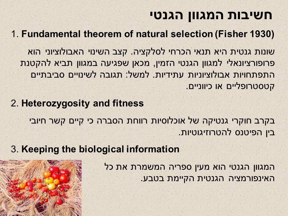 חשיבות המגוון הגנטי 1. Fundamental theorem of natural selection (Fisher 1930)