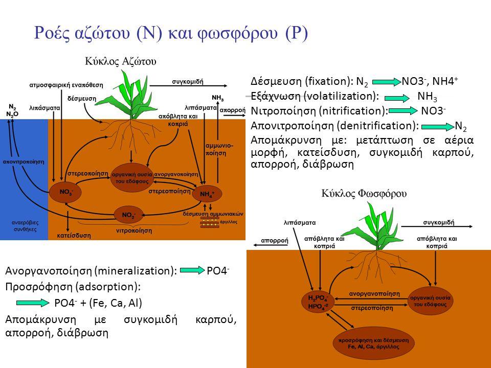 Ροές αζώτου (Ν) και φωσφόρου (P)