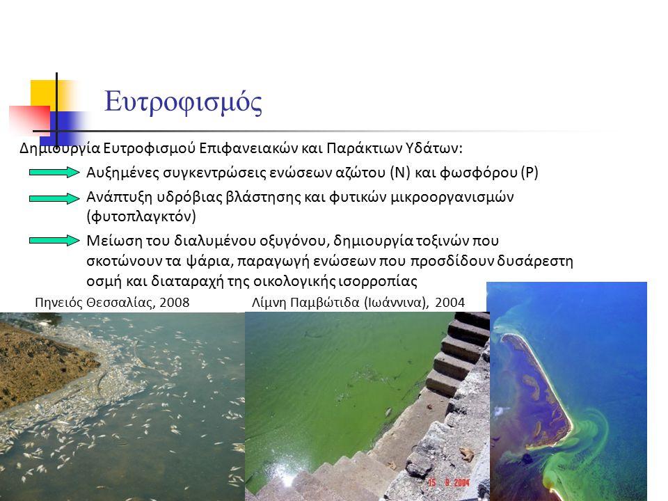 Ευτροφισμός Δημιουργία Ευτροφισμού Επιφανειακών και Παράκτιων Υδάτων: