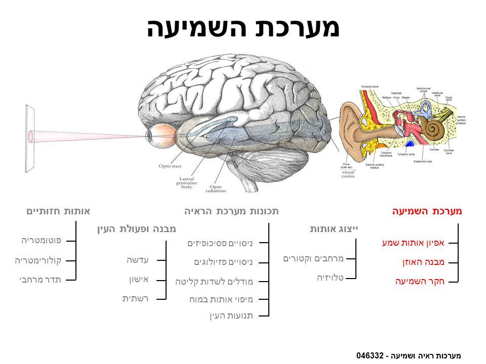 מערכת השמיעה אותות חזותיים תכונות מערכת הראיה מערכת השמיעה