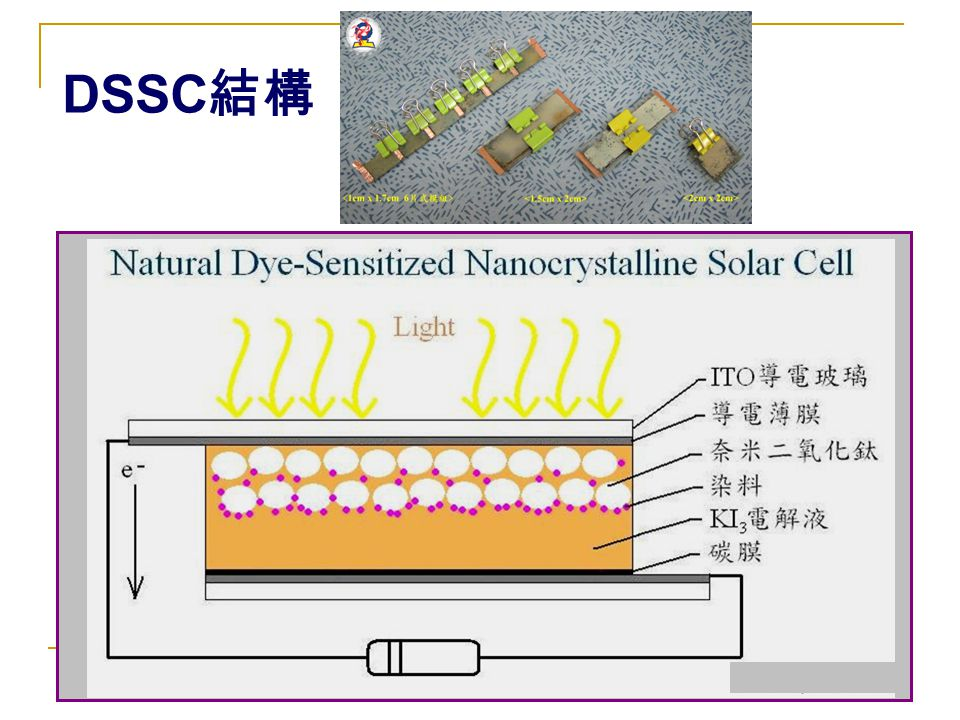 DSSC結構
