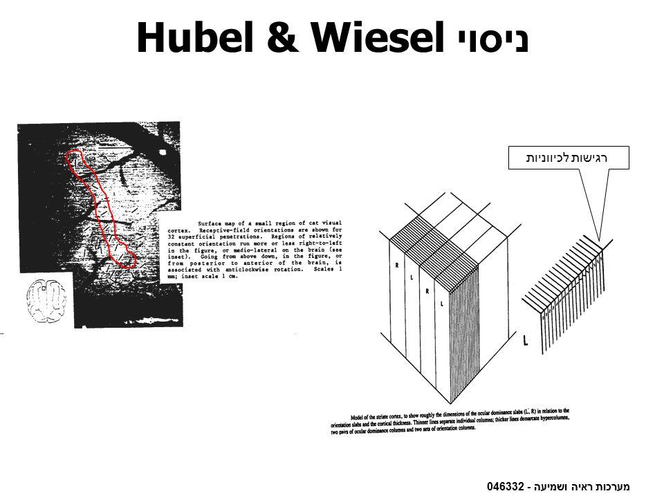 ניסוי Hubel & Wiesel רגישות לכיווניות מערכות ראיה ושמיעה - 046332