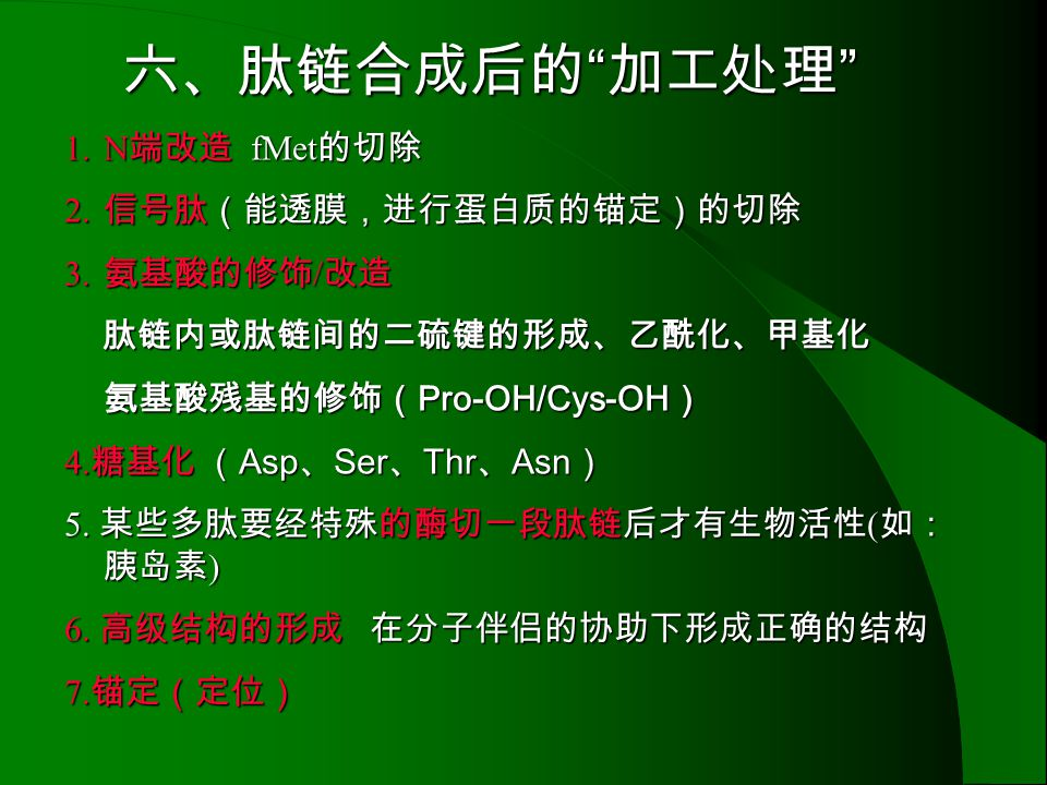六、肽链合成后的 加工处理 N端改造 fMet的切除 信号肽(能透膜,进行蛋白质的锚定)的切除 氨基酸的修饰/改造