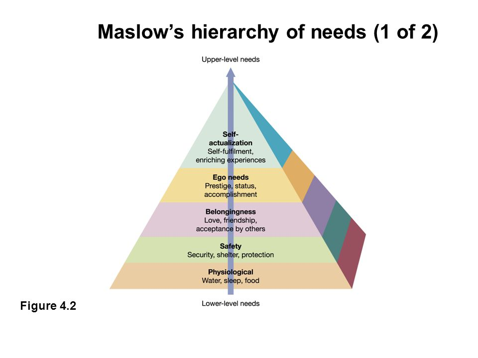 Maslow's hierarchy of needs (1 of 2)