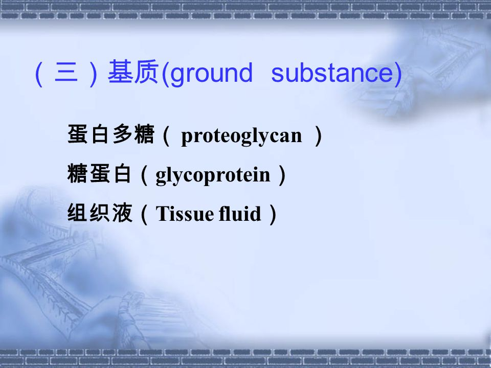 (三)基质(ground substance)