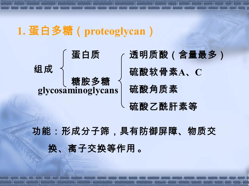 1. 蛋白多糖(proteoglycan) 蛋白质 透明质酸(含量最多) 硫酸软骨素A、C 硫酸角质素 硫酸乙酰肝素等 组成 糖胺多糖