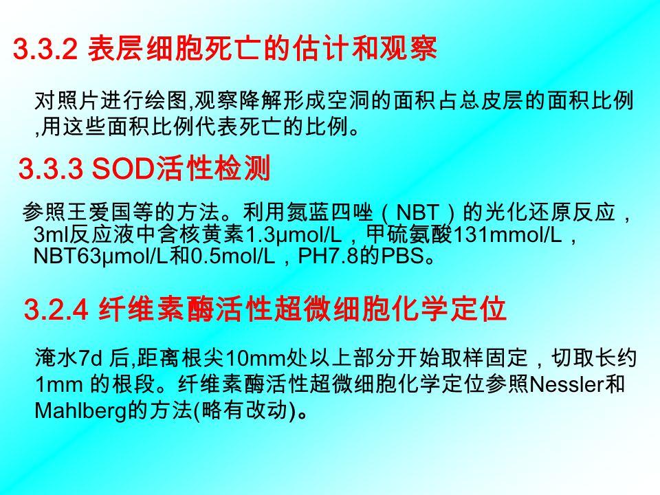 3.3.2 表层细胞死亡的估计和观察 3.3.3 SOD活性检测 3.2.4 纤维素酶活性超微细胞化学定位