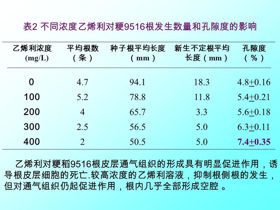 表2 不同浓度乙烯利对粳9516根发生数量和孔隙度的影响