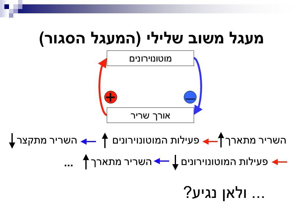 מעגל משוב שלילי (המעגל הסגור)
